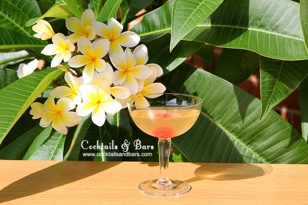 Jamaica Float Cocktail Recipe