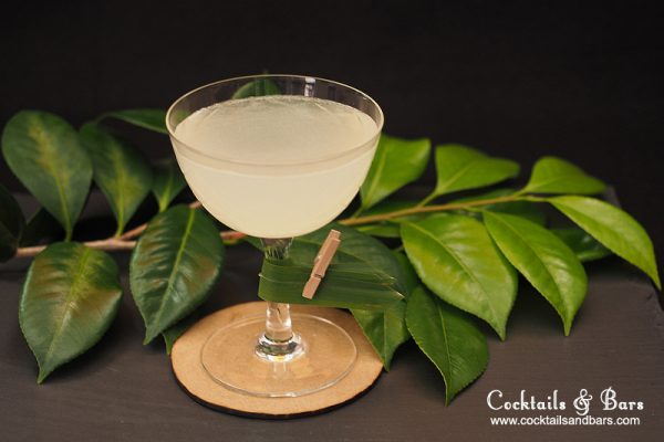 Coconut Water Vodka Cocktail