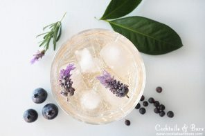 7 Ways to Upgrade Gin and Tonic For Summer