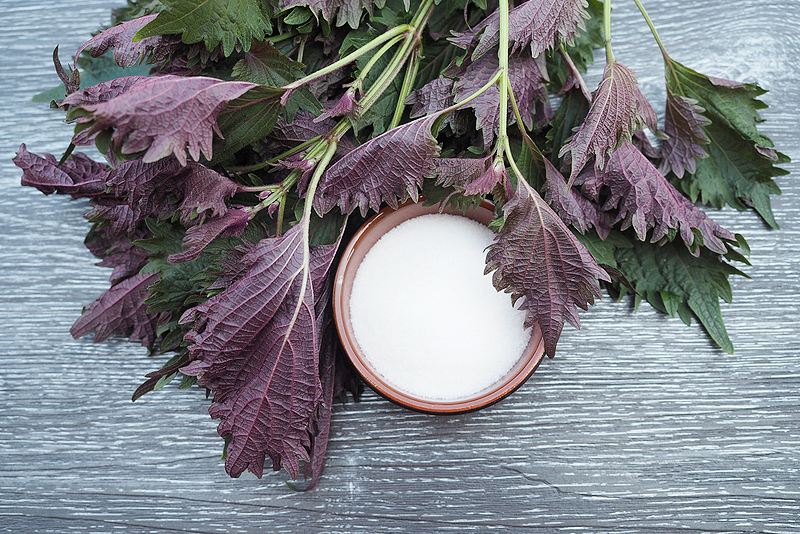 How to Make Shiso Syrup and Use it in Cocktails